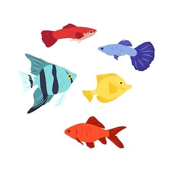 Zestaw jasnych ikon ryb charakter ilustracji mórz i oceanów w stylu płaski