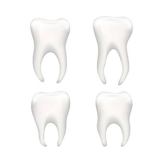 Zestaw jasnych realistycznych ludzkich zębów na białym tle