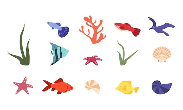 Zestaw jasnych rybich korali, muszelek i morskich elementów letnich morskich przedmiotów lub do akwarium