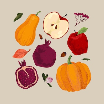Zestaw jesienny. żniwa, granat, jabłko, dynia, jasne liście, jarzębina, żołędzie. ilustracja odręczna.