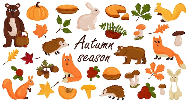 Zestaw jesiennych elementów, zwierząt, grzybów, jasnych kolorowych jesiennych liści. styl kreskówki wektor. pojedynczo na białym tle.