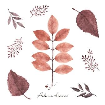 Zestaw jesiennych liści akwarela ręcznie malowane na białym tle. ilustracja idealna do projektowania dekoracyjnego na jesiennym festiwalu. kartki okolicznościowe, zaproszenia, plakaty.