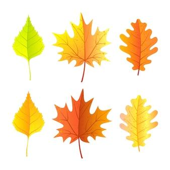 Zestaw jesiennych liści. jasny styl kreskówki. ilustracja wektorowa