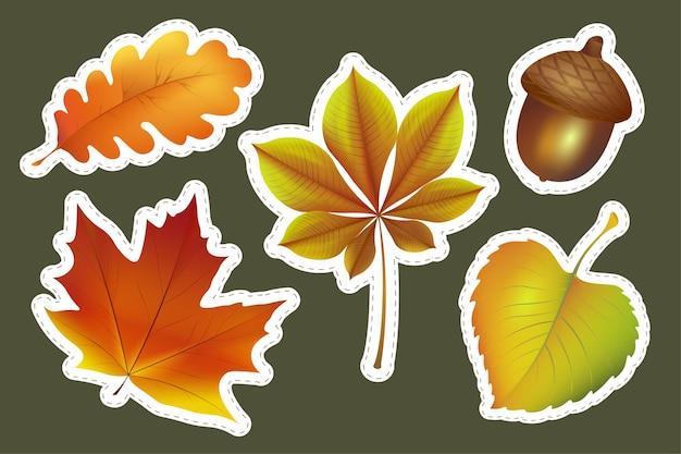 Zestaw jesiennych liści na białym tle na zielono