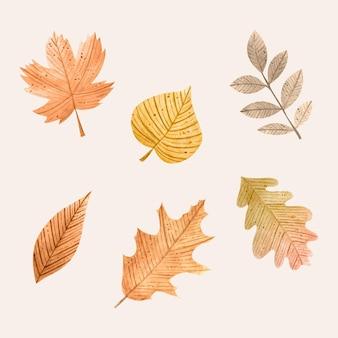 Zestaw jesiennych liści w stylu przypominającym akwarele