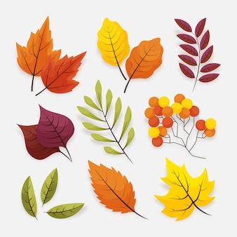Zestaw jesiennych liści