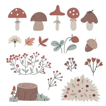 Zestaw jesiennych roślin leśnych dzikie grzyby jagody i krzewy jesienna atmosfera