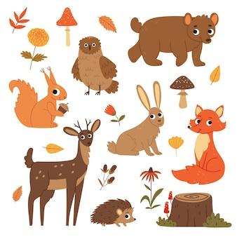 Zestaw jesiennych zwierząt leśnych i roślin niedźwiedź sowa wiewiórka lis jeleń jeż zając