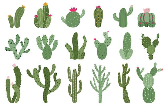 Zestaw kaktusów w płaskiej konstrukcji