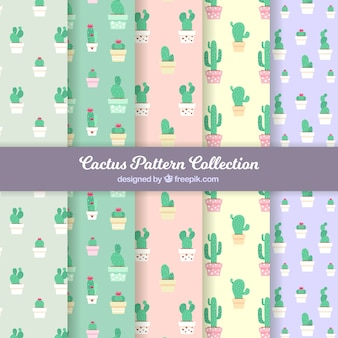 Zestaw kaktusów w płaskim deseniu