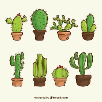 Zestaw kaktusów wyciągnięty ręcznie