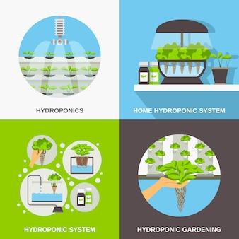 Zestaw kart płaskich hydroponics