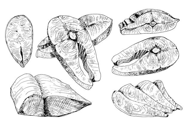 Zestaw kawałków mięsa łososia na białym tle. element projektu menu, etykiety, godło, znak, plakat. ilustracja.