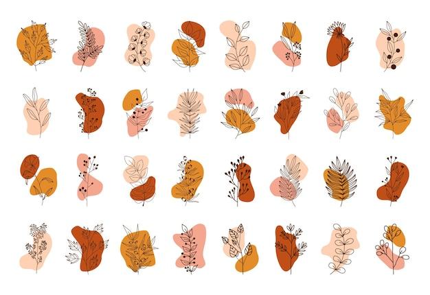 Zestaw kół w różnych kolorach. tropikalne rośliny, liście i gałęzie z kwiatami. ręcznie rysowane styl.