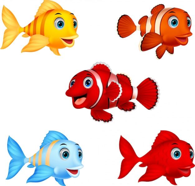 Zestaw kolekcja ryb kreskówka