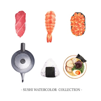 Zestaw kolekcja sushi na białym tle akwarela
