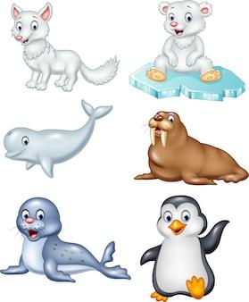 Zestaw kolekcja zwierząt arktycznych kreskówka