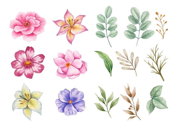 Zestaw kolekcji kwiatów i liści do projektowania bukietów
