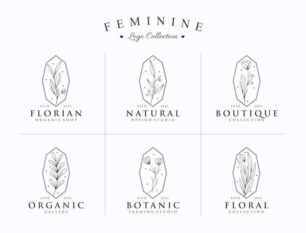Zestaw kolekcji logo botanicznego minimalistycznego ręcznie rysowane stylu