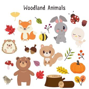 Zestaw kolekcji zwierząt leśnych.