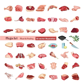 Zestaw kolorowych elementów drobiu i mięsa