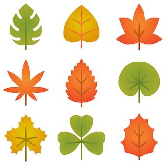 Zestaw kolorowych jesiennych liści kolekcja