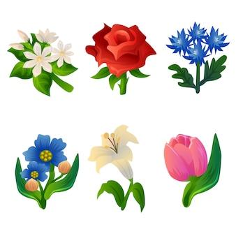 Zestaw kolorowych kwiatów kwiatowych