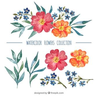 Zestaw kolorowych kwiatów w stylu watecolor