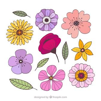 Zestaw kolorowych kwiatów w stylu wyciągnąć rękę