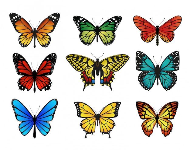 Zestaw kolorowych motyli.