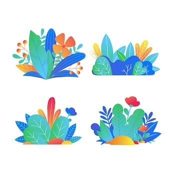 Zestaw kolorowych roślin