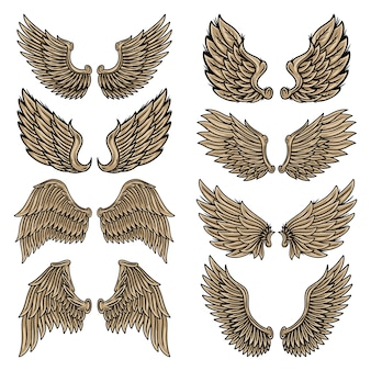 Zestaw kolorowych vintage retro skrzydła aniołów i ptaków na białym tle ilustracji w stylu tatuażu.