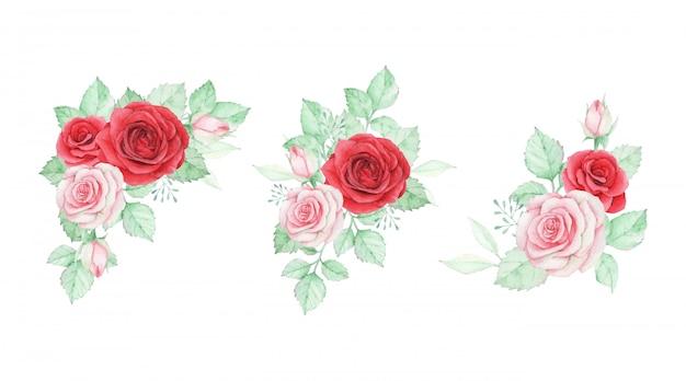 Zestaw kompozycji akwarela kwiat róży.