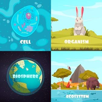 Zestaw kompozycji hierarchii biologicznej