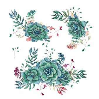 Zestaw kompozycji kwiatowy sukulenty w stylu wyciągnąć rękę.