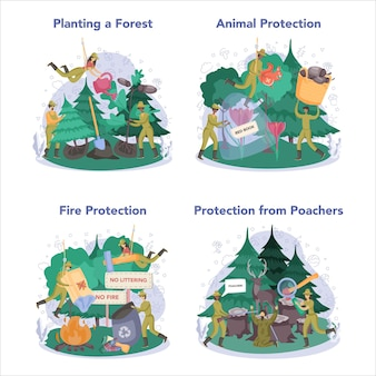 Zestaw koncepcji leśnika