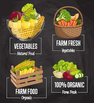 Zestaw koncepcji żywności ekologicznej gospodarstwa