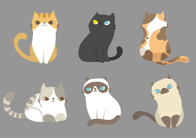 Zestaw kotów w różnych pozach.