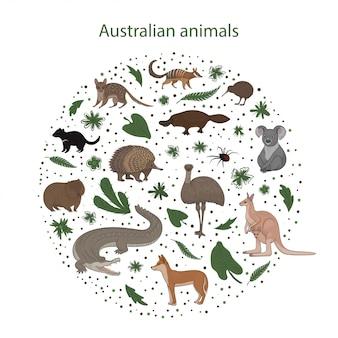 Zestaw kreskówek australijskich zwierząt z liśćmi kwiatów i plam w okręgu. quoll, redback spider, kiwi, numbat, dziobak, koala, wombat, echidna, emu diabeł tasmański krokodyl dingo kangur