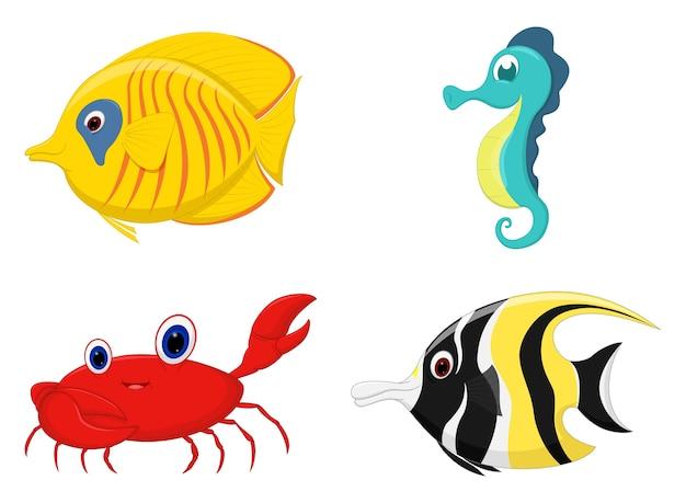 Zestaw kreskówek ryb morskich