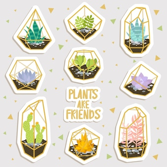 Zestaw kreskówka kaktusów i sukulentów w naklejek geometrycznych terrariów. śliczne naklejki lub łatki lub kolekcja szpilek. rośliny są przyjaciółmi