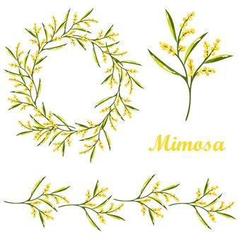 Zestaw kreskówka kwiat mimozy