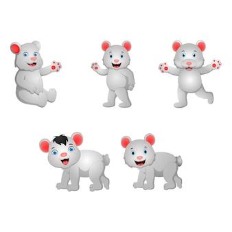 Zestaw Kreskówka Niedźwiedź Polarny Premium Wektorów