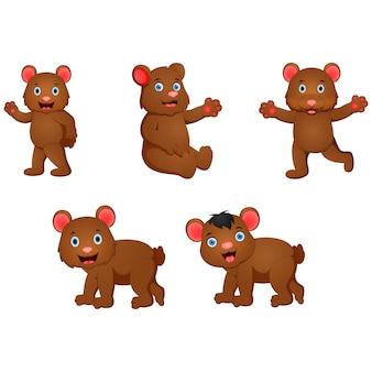 Zestaw kreskówka niedźwiedź