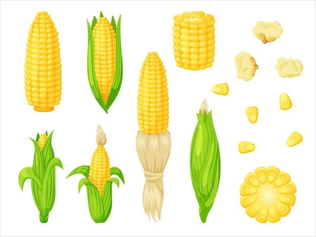 Zestaw kukurydzy na białym tle