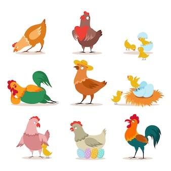 Zestaw kurczaka pisklę hodowlane, kura i kogut w różnych pozach. wesołych świąt bożego narodzenia.