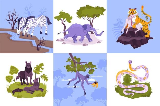 Zestaw kwadratowych kompozycji z płaskimi postaciami roślin lasów deszczowych i tropikalnych zwierząt z ilustracjami drapieżników węży