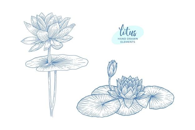 Zestaw kwiat lotosu. ręcznie rysowane elementy