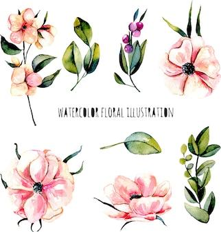 Zestaw kwiatów akwarela różowy anemon, gałąź jagody i rośliny zielone