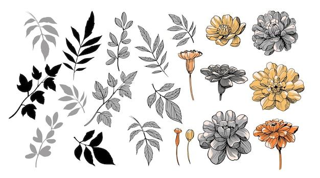 Zestaw kwiatów i gałęzi ilustracji wektorowych clipart grupa obiektów do projektowania